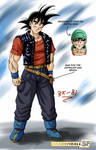 Gokus new outfit in DB SF