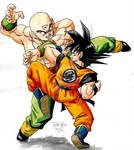 Goku Vs Tenshinhan