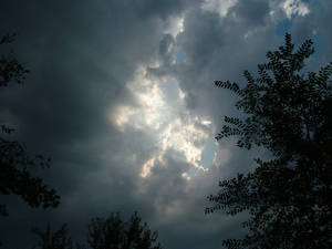 Stormly Sky