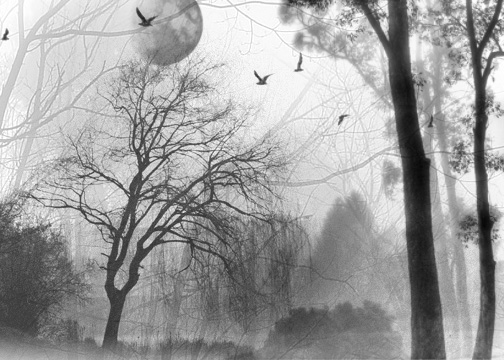 Serenity by RosalieCullen37