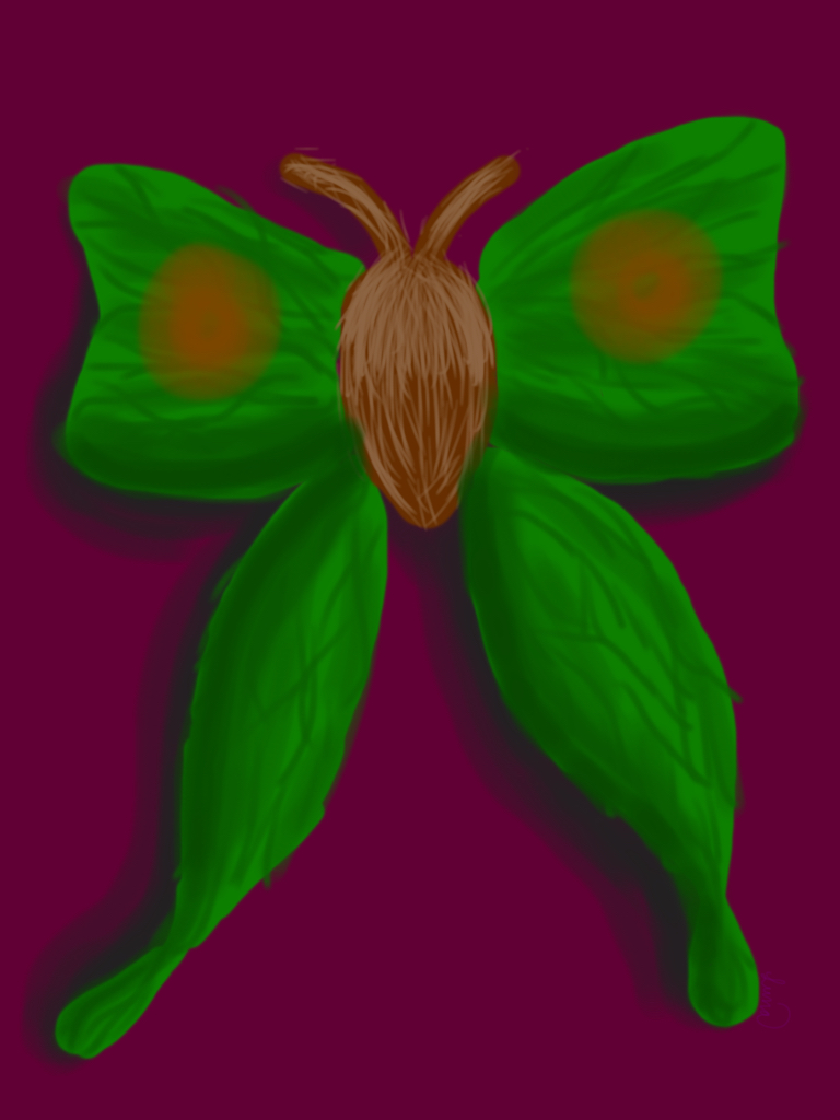 Flying Insect Sketchbook App Challenge by Anime-Butterfly on DeviantArt