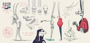 Skeleton - Kosta Ref