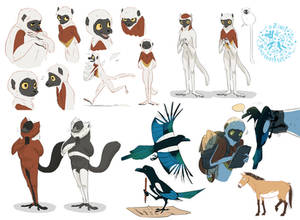 Lemur sketches