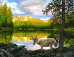 Lasson National Park