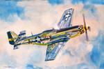 Airshow Mustang
