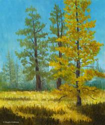 Mt Pinos Trees Plein Air by DouglasCastleman