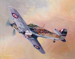 Hawker Hurricane by DouglasCastleman