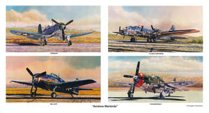 Airshow Warbirds by DouglasCastleman