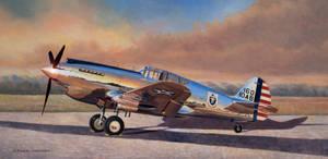 Airshow Warhawk
