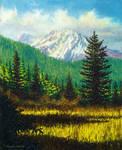Mt  Shasta View