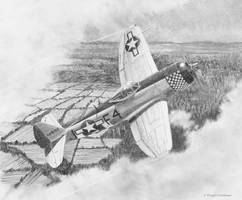 Republic P 47D Thunderbolt Drawing