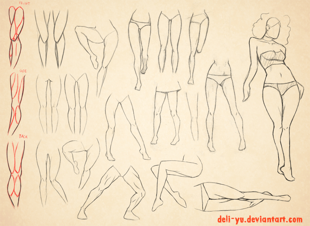 Sketch Dump - Leg anatomy study by deli-Yu