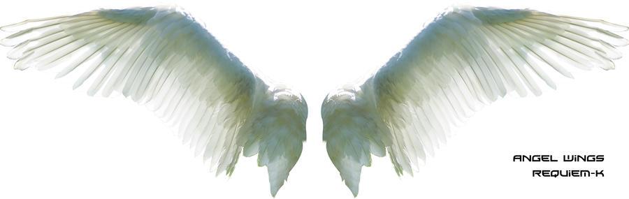 HQ Angel Wings Render by
