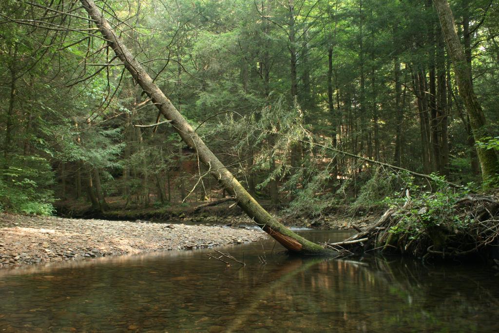 (Stock) - Landscape 06 by MooseyStock