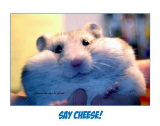 Say Cheese by HenarTorinos