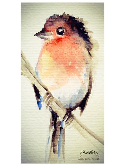 European Robin by ISHAWEE