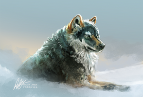 Gray Wolf by ISHAWEE