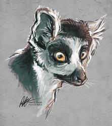 Lemur by ISHAWEE