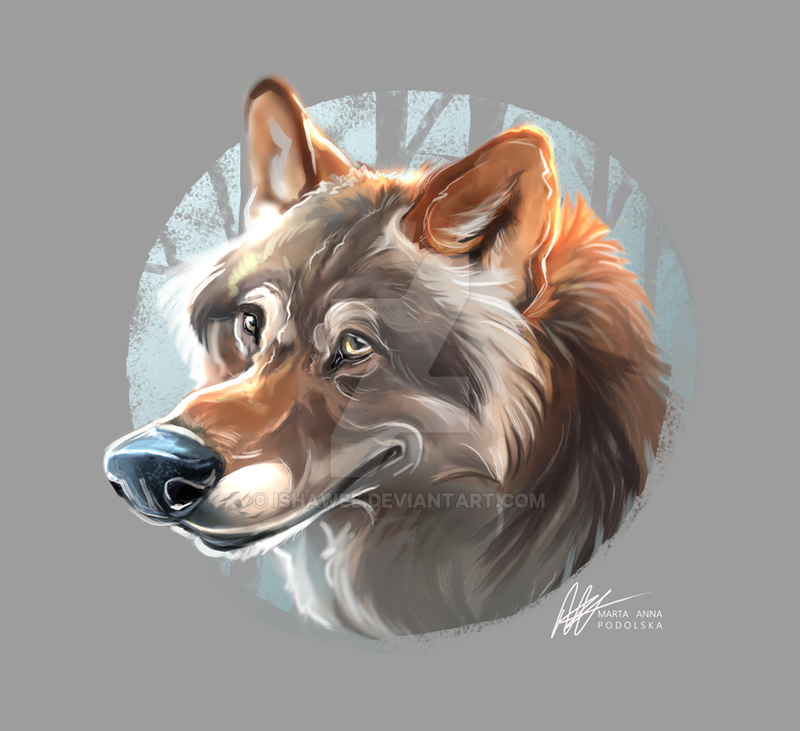 Goofy wolf by ISHAWEE