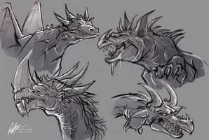 Dragon Concepts by ISHAWEE