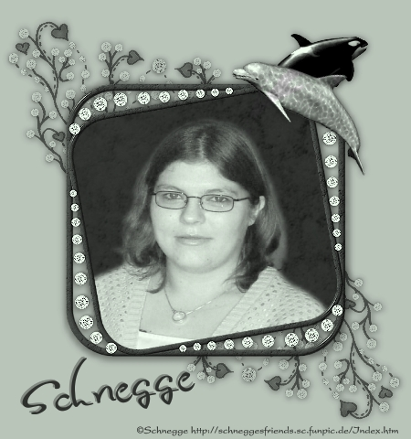 Schnegge82's Profile Picture