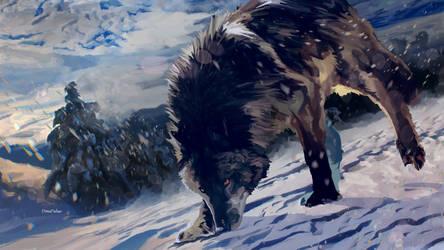 -Wolf-