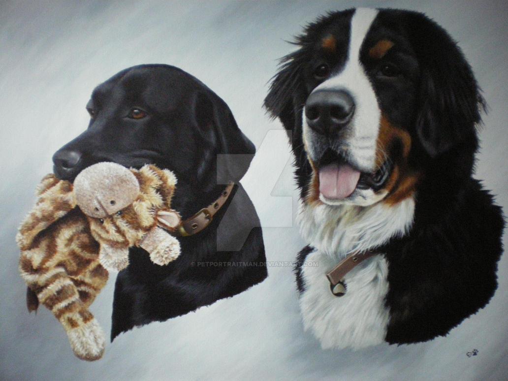Alfie and Humphrey by petportraitman