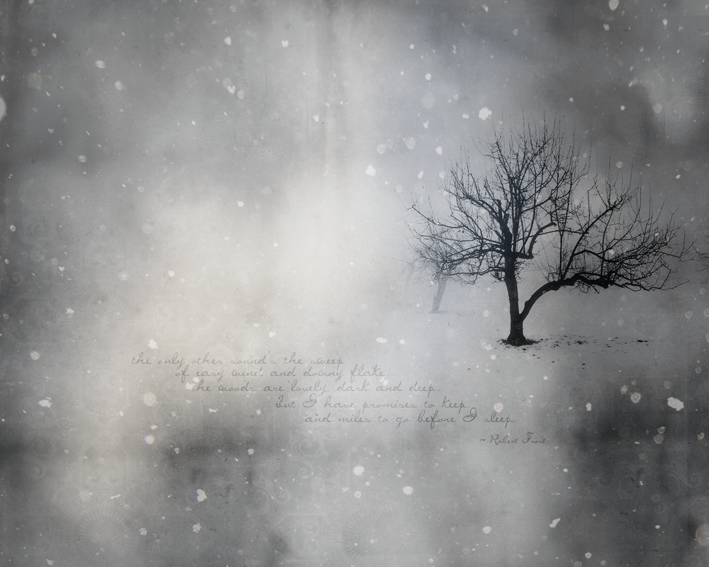 Winter Tree wallpaper by olde-fashioned