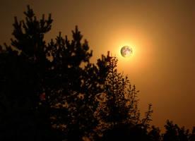 Moonlight by KSnake