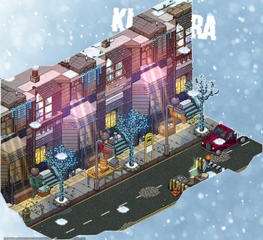 N.Y in winter / N.Y en hiver