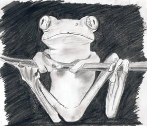 Monochromatic Frog by Vantaj
