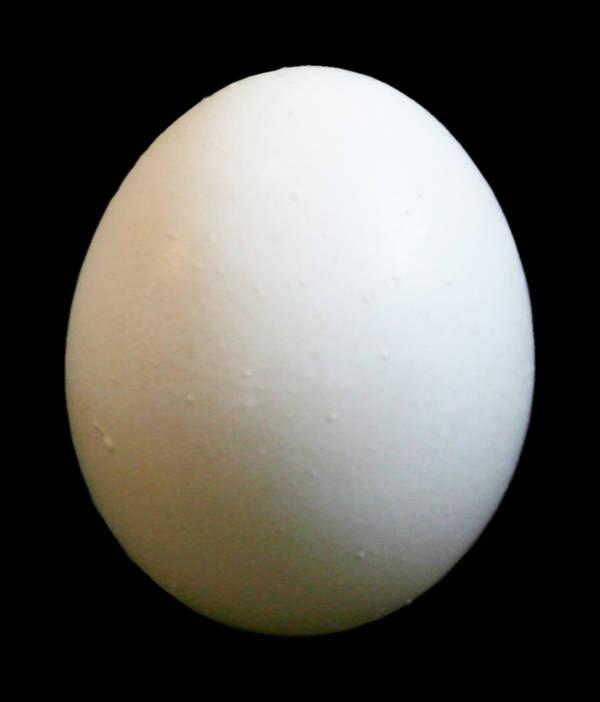 Stock egg by kilroyhasbeenhere