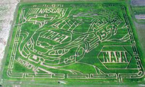 NASCAR Corn Maze by timshido