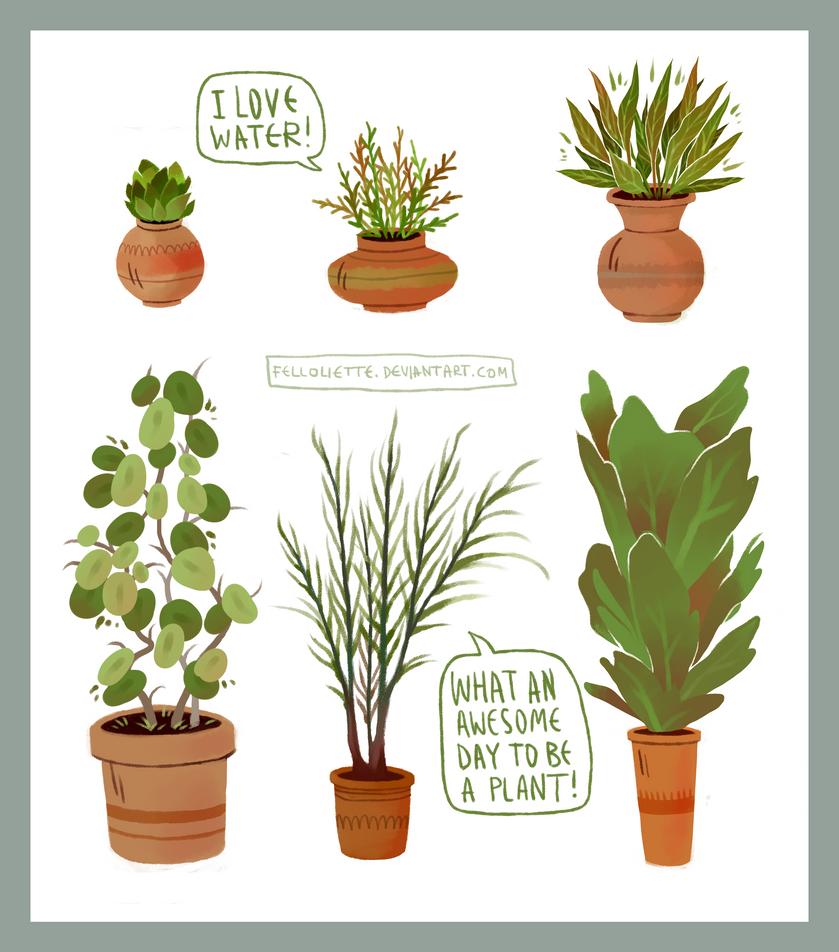 plants by felloliette