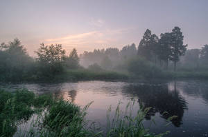 Fog 01