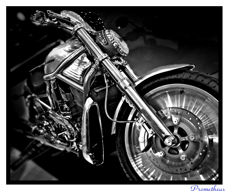 A Harley Davidson by PrometheusTR
