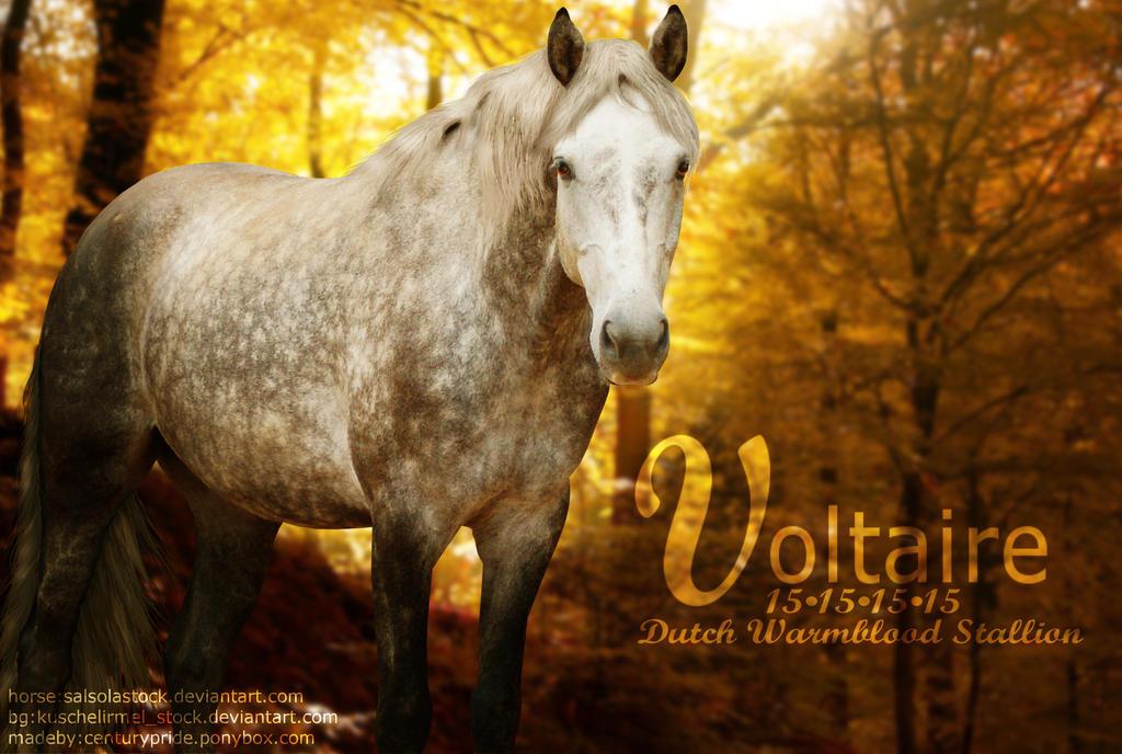 Voltaire by CenturyPride