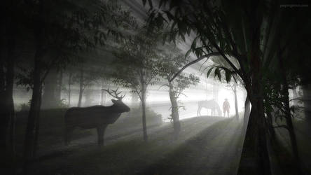 Stalking the Light by JoePingleton