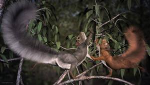 Happy Squirrel Dance