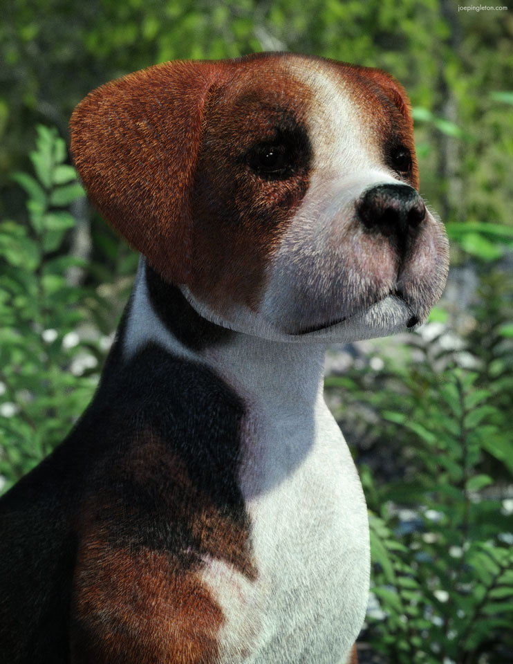 Regal Beagle by JoePingleton