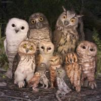 Family Reunion by JoePingleton