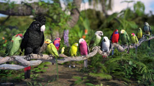 Parrot Party by JoePingleton