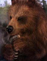Bear Hug by JoePingleton