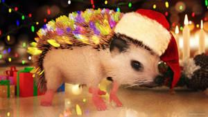 Hedgey Holidays by JoePingleton