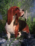 Ain't Nothing But A Basset Hound Dog