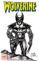 Wolverine Sketch Cover by dnewlenox