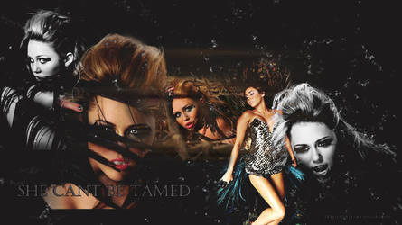 can't be tamed wallpaper by heretoparty