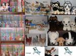 Full Ginga Collection