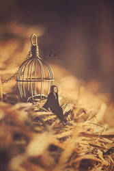 We are all caged inside our nest