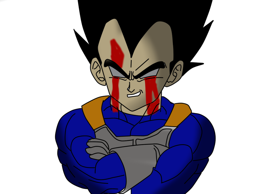 Vegetas Revenge by Darkthehedge12